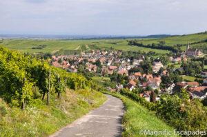 Route des vins-Alsace